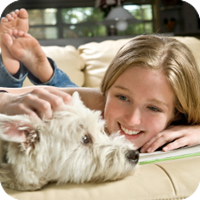 The AVMA strongly recommends that for a healthier, happier pet you consider keeping your pets indoors only.